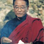 Tarab-Tulku-rinpoche